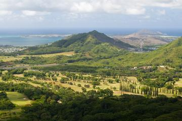 Oahu and Pearl Harbor Sightseeing Tour from Waikiki -in-Oahu
