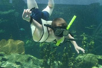 Ocean World Adventure Park in Puerto Plata