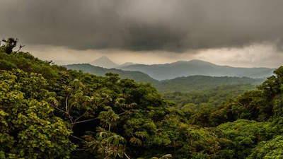 Reserva Bosque Nuboso Santa Elena aka Santa Elena Cloud Forest Reserve in Monteverde