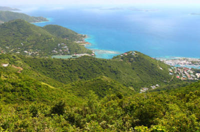 Sage Mountain Tortola British Virgin Islands