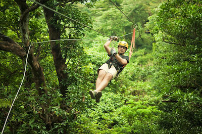 Sarapiqui Canopy Tour from San Jose