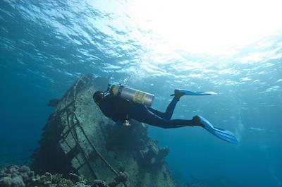 Things To Do In Aruba - Scuba Diving