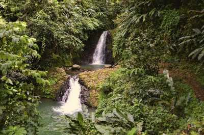 Seven Sisters Falls in Grenada