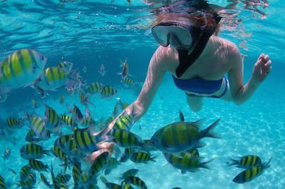 Snorkeling in Montego Bay
