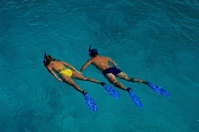 Snorkeling Tour in Roatan