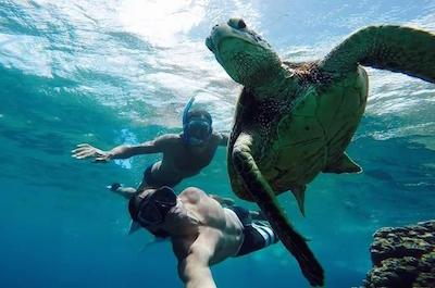 Snorkeling in San Juan