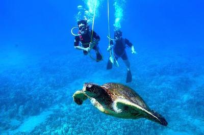 St. Thomas Snuba Diving