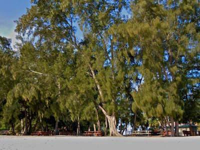 South Lido Park in Sarasota