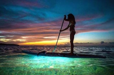 Stand Up Paddleboarding in Miami