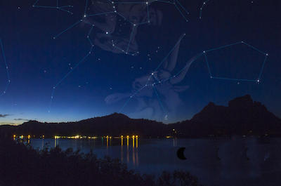 Stargazing tour in Bora Bora