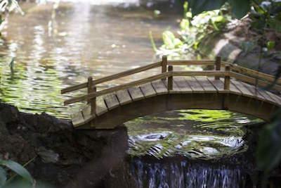 Sunken Gardens in Tampa