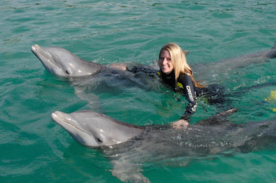 things to do in Freeport Bahamas - xSwim with Dolphins