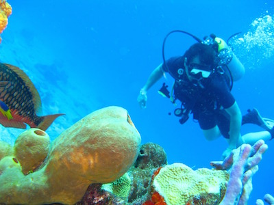 Things To Do In Grand Turk - The Wall