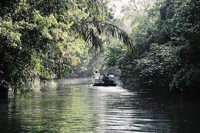 Tortuguero National Park in Costa Rica