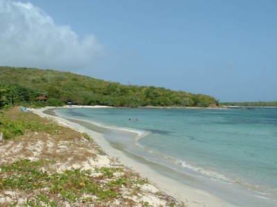 Vieques National Wildlife Refuge