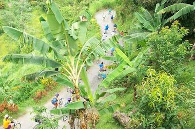 Walking and biking tours in Ocho Rios
