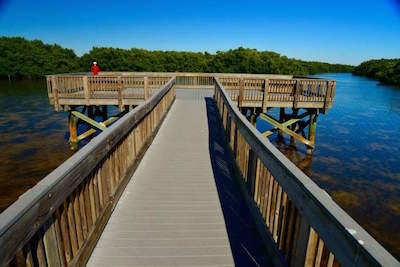 Weedon Island Preserve in Tampa