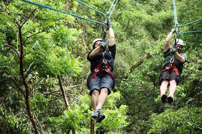 Ziplines in Montego Bay