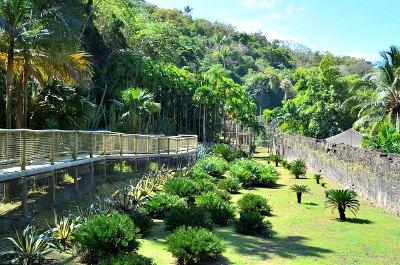 Zoo de Martinique - Habitation Latouche in Martinique