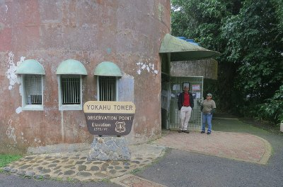 Yokahu Observation Tower  In El Yunque Rainforest