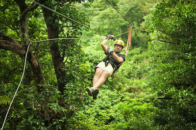 Zipline Canopy Adventure Antigua Barbuda