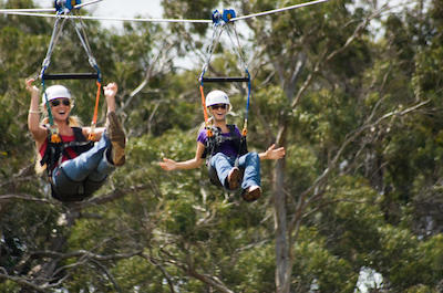 Zipline Tours in Maui